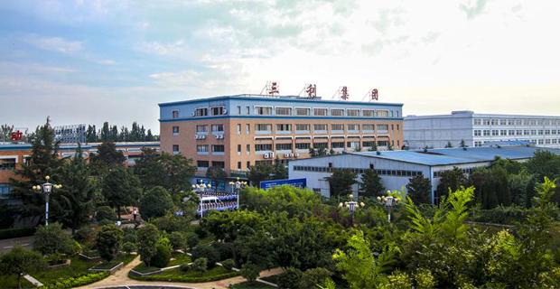 青岛三利集团有限公司工作环境公司俯视图
