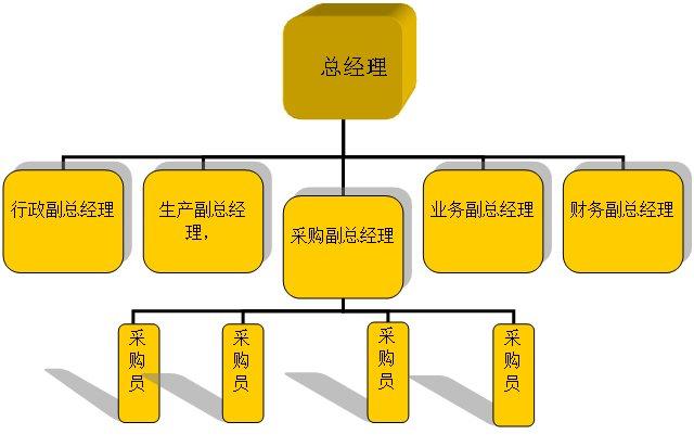 绘制直线制组织结构图