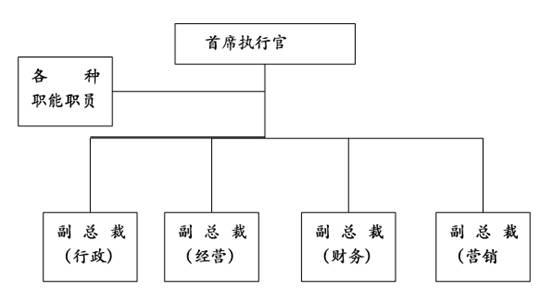中小公司组织结构图
