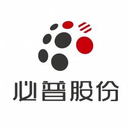必普电子商务集团股份有限公司