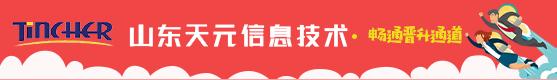 山东天元信息技术股份有限公司